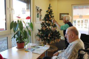 Krasitev božičnih drevesc