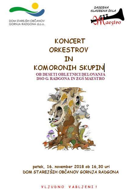 Koncert orkestrov in komornih skupin
